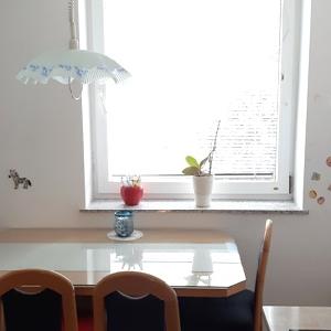 Odamo vzdrževano 2 sobno stanovanje v Rušah