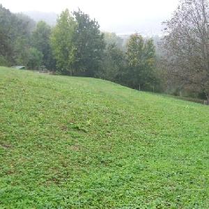 Kmetijsko zemljišče
